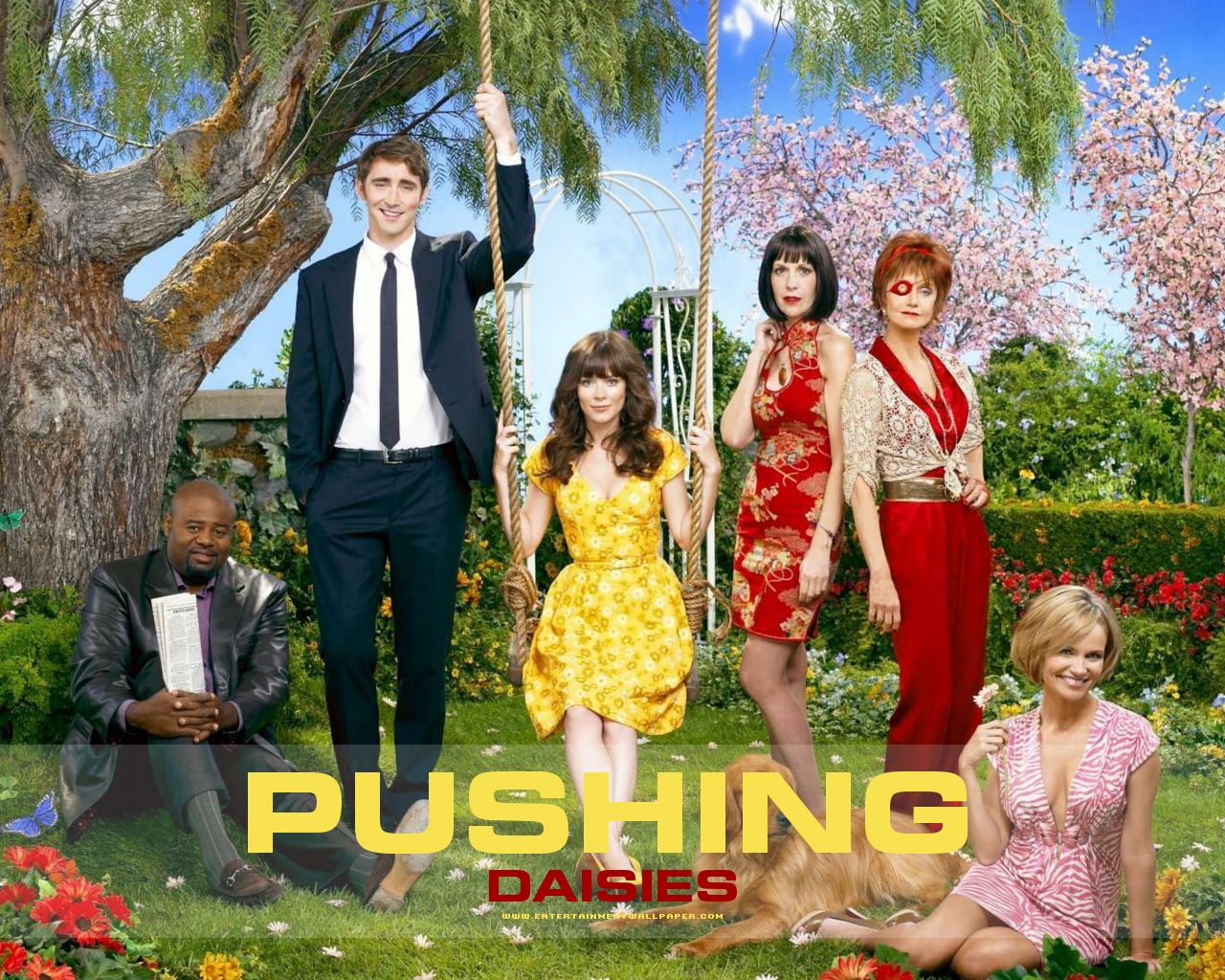 tv_pushing_daisies01
